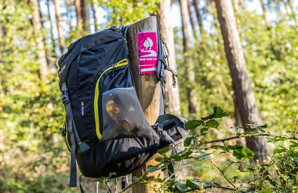 """Auf dem Hohe Mark Steig geht es auch durch das vielseitige Waldgebiet """"Die Haard"""". Foto: Stefan Bröker"""