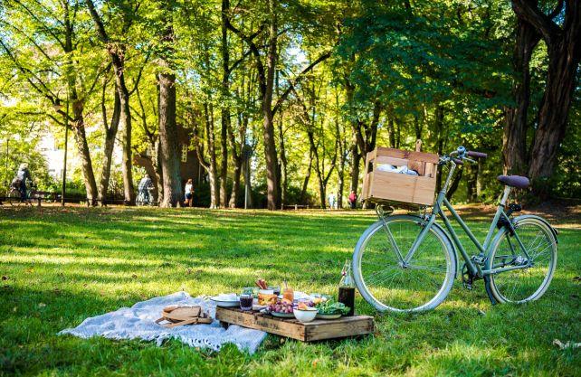 Touren im Münsterland sind auch wegen der schönen Picknick-Plätze beliebt. Foto: Münsterland e.V./Foodistas