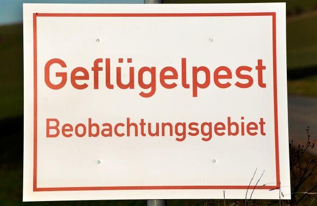 Ein Schild weist auf die Geflügelpest hin. Foto: Archiv des Kreises Soest/Thomas Weinstock
