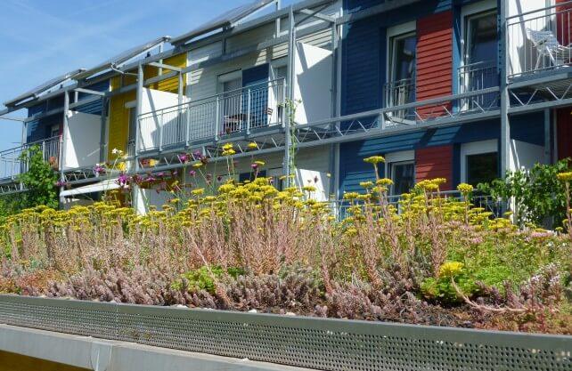 Dachbegrünungen können zu einem verbesserten Stadtklima beitragen. Foto: Johannes Gerstenberg_pixelio.de