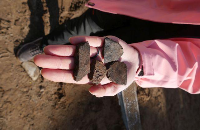 Diese Scherben fanden die Archäologen im dunklen Gartenboden: die ältesten Nachweise für Besiedlung Schloss Neuhauses. Foto: T. Lodemann/EggensteinExca