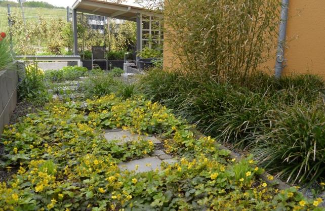 Blumen und Gräser zieren die Beete an der LWL-Einrichtung bei Dorsten. Foto: LWL/Seifert