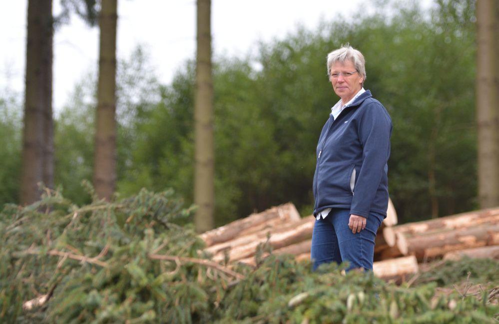 Alexa von Plettenberg auf einer vom Harvester bearbeiteten Fläche. Foto: Jürgen Bröker