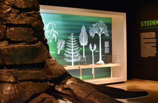 Im ersten Raum des Rundgangs Steinkohle ist Stammrest eines Schuppenbaumes zu sehen. Er stammt aus der Karbonzeit. Foto: Jürgen Bröker