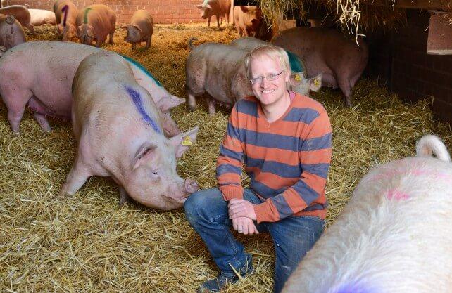 Landwirt Georg Große Böckmann inmitten seiner Schweine. Foto: Jürgen Bröker