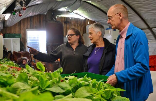 Neue Ideen der Vermarktung: Bei der Solidarischen Landwirtschaft stützen die Verbraucher durch monatliche Beiträge den Landwirt. Foto: Jürgen Bröker