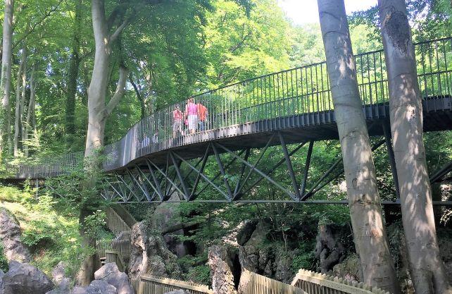 Das Felsenmeer lässt sich von Wanderwe- gen und Brücken aus bestens erkunden. Foto: A. v. Braunschweig