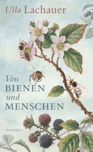 Ulla Lachauer: Von Bienen und Menschen, Rowohlt 2018, 384 S., 22 Euro (E-Book 19,99 Euro), ISBN 978-3-498-03926-4