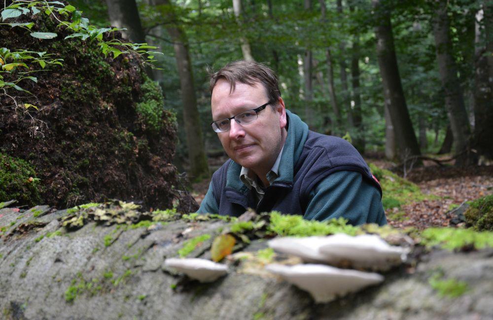 Michael Elmer aus dem Team Waldnaturschutz bei Wald und Holz NRW  Foto: Jürgen Bröker