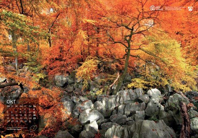 Der Goldene Herbst am Felsenmeer in Hemer. Foto: Manh Ngoc Nguyen