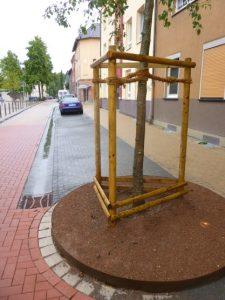 Die Rigolen dienen als Wasserspeicher. Foto: Stadt Bochum