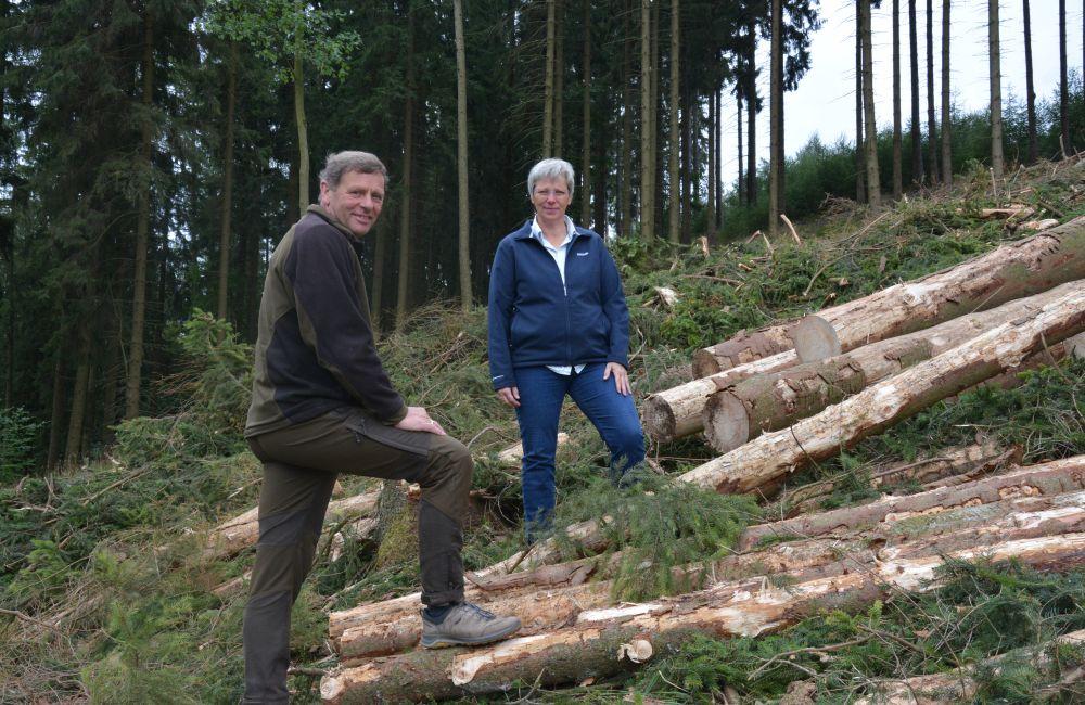Gundolf und Alexa von Plettenberg auf einer frischgerodeten Fläche mit Fichtenstämmen Foto: Jürgen Bröker
